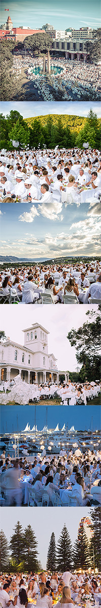 Diner en Blanc A Year in Review